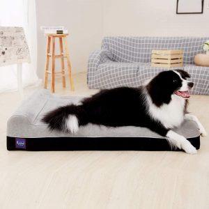 Dog beds Foam Orthopedic